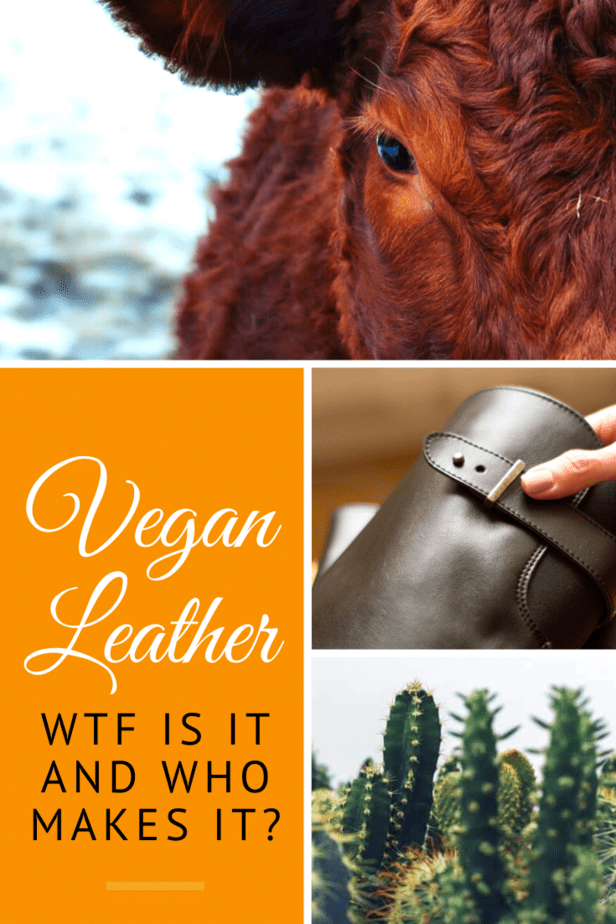 What is Vegan Leather? Is it as good as the real deal? What's it made from? Here's why you should care, and the top vegan leather brands!