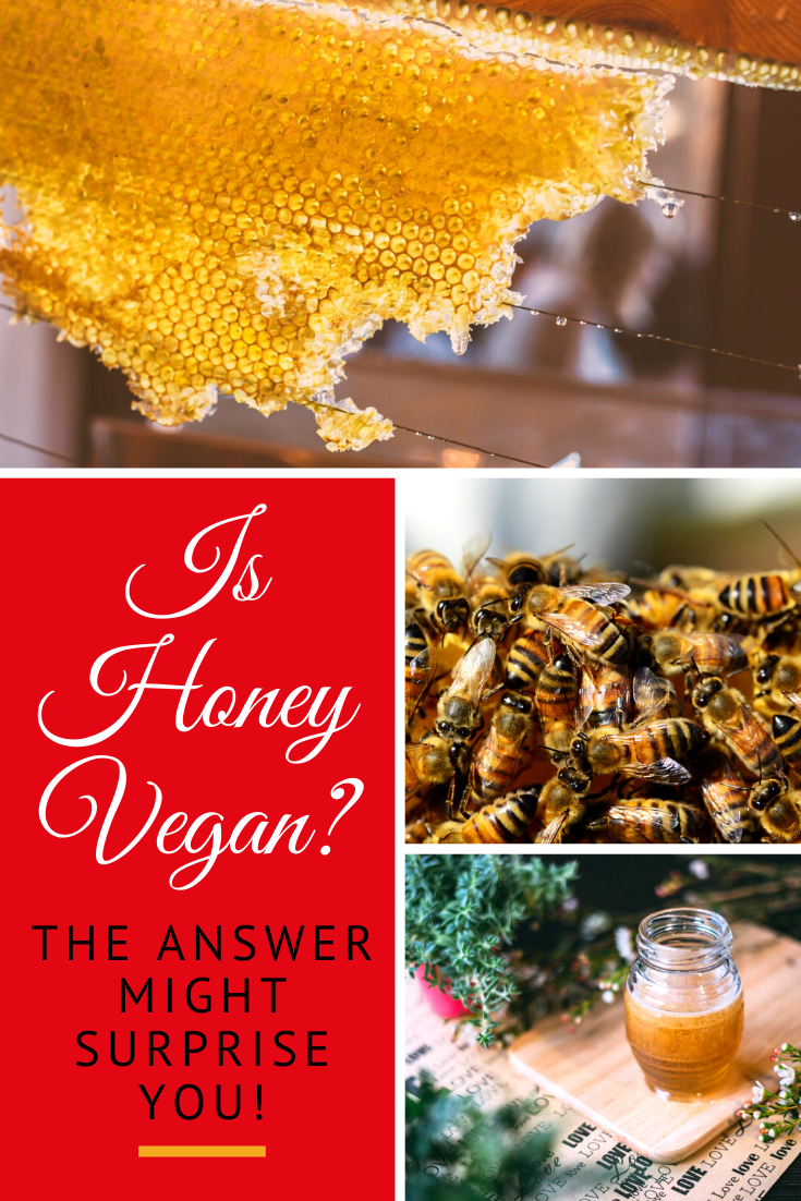 It's a big debate amongst the vegan community. Is honey vegan? What's the harm in consuming it? Why should we care about bees. Answered here!