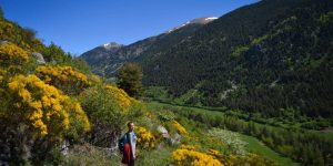 Walking in the Steps of Europe's First Vegans - The Cathars